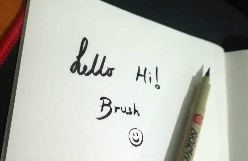 עט מכחול pigma brush