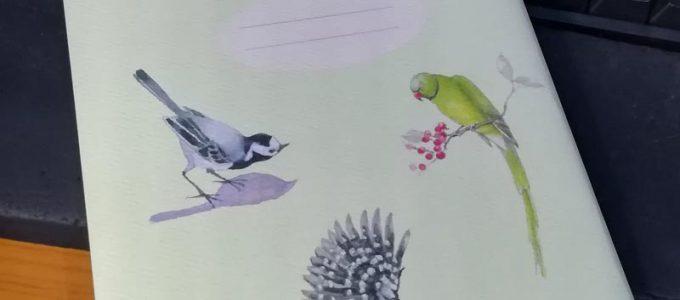 מחברת ציפורים אנימו אב